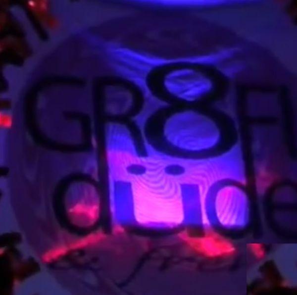 Gr8FLdude & Frenz(Grateful Dead Cover Band )